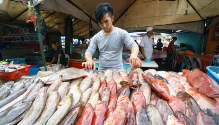 Ένα στα τέσσερα ψάρια που τρώμε περιέχει ανθρώπινα σκουπίδια