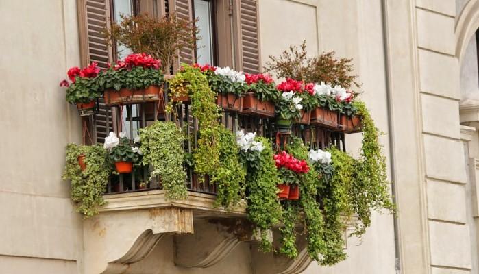Διαγωνισμός για τον «καλύτερο κήπο & «καλύτερο μπαλκόνι» στο Δήμο Χανίων