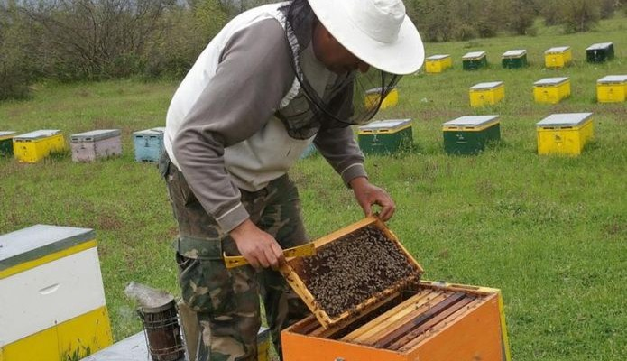 Οδηγίες στους μελισσοτρόφους για την τοποθέτηση κυψελών μελισσών