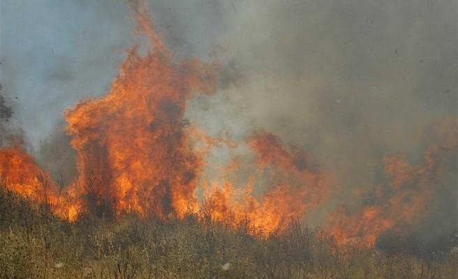 Πυρκαγιά στο Φραγκοκάστελλο στα Σφακιά κατασβέστηκε πριν πάρει διαστάσεις