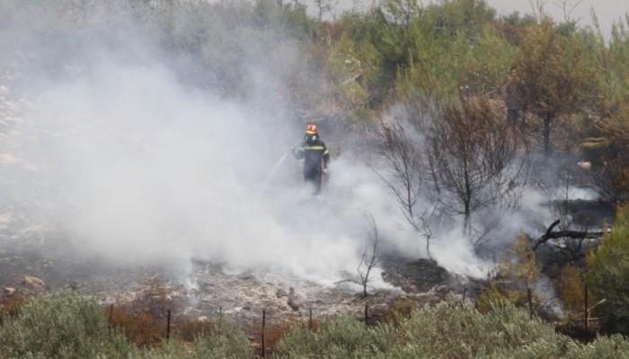 Δηλώσεις για τις ζημιές απο την πυρκαγιά στον Δήμο Ιεράπετρας
