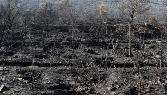 Υπο έλεγχο τέθηκε η φωτιά στα νότια του νομού Ρεθύμνου