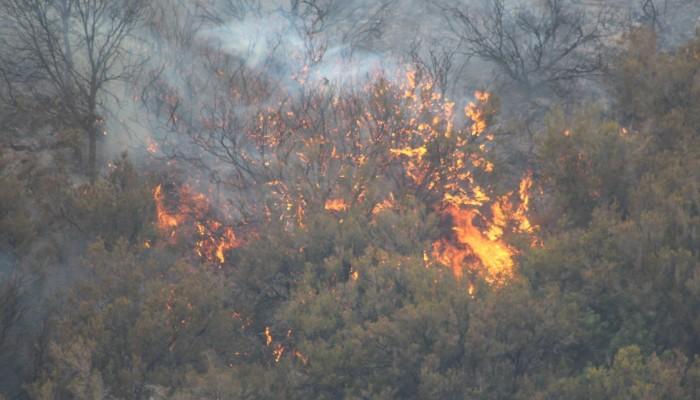 Από το μεσημέρι τρέχει σε φωτιές στην Κρήτη η Πυροσβεστική