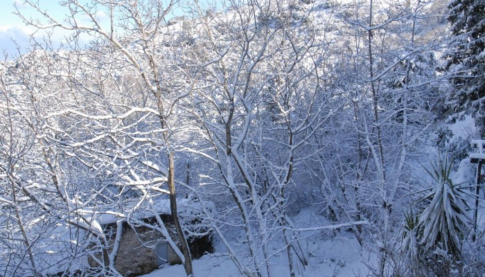 Κλειστά τα σχολεία αύριο στο δήμο Αρχανών - Αστερουσίων