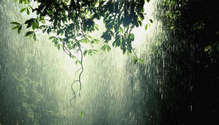 Μανώλης Λέκκας: Με βροχές και χαμηλές θερμοκρασίες η νέα εβδομάδα στη Κρήτη