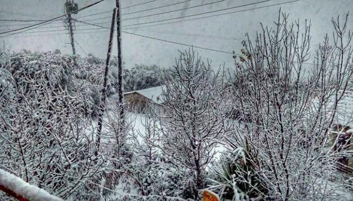 Δηλώσεις ζημιών από χιονόπτωση στον Δήμο Κισσάμου
