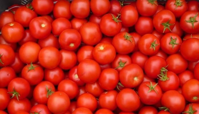 Ο Σύλλογος Τριών Τέκνων Χανίων θα μοιράσει δωρεάν ντομάτες
