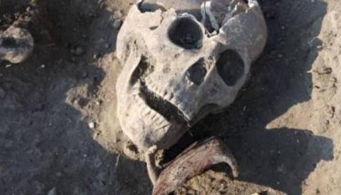 Ώρα DNA για τον σκελετό - Συγγενείς αγνοούμενων έδωσαν γενετικό υλικό