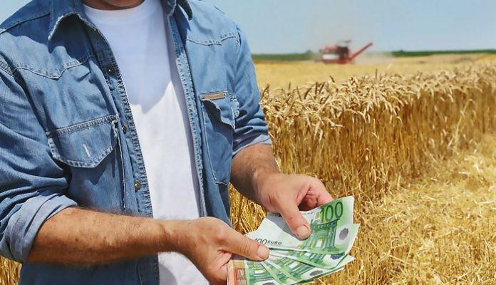 Στο στρέμμα ο Ολλανδός παίρνει 1700 €,ο Ισραηλινός 1300 και ο Έλληνας 190 €