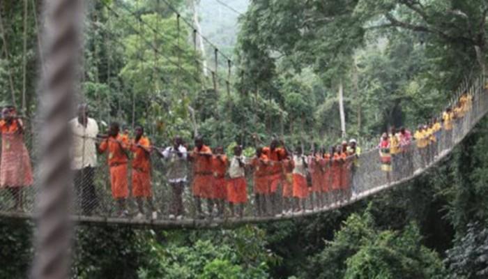 Δέντρο καταπλάκωσε 18 ανθρώπους κοντά σε καταρράκτη στη Γκάνα