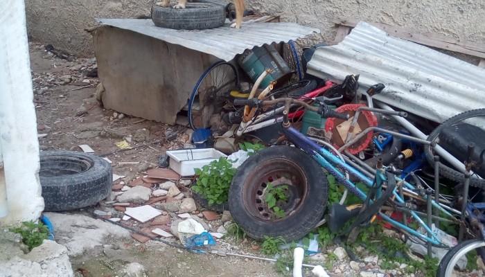 Παρέμβαση του φιλοζωικού συλλόγου για παθητική κακοποίηση σκυλιών στα Χανιά