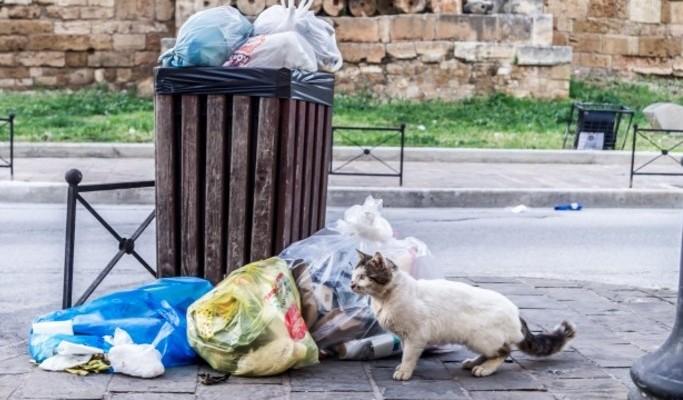 Χανιά: Ιδού η υπηρεσία Πόρτα-Πόρτα την οποία πληρώνουν
