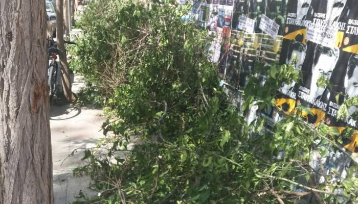 Χανιά: Παράτησαν για μέρες τα κλαδιά κλείνοντας την πρόσβαση στο πεζοδρόμιο