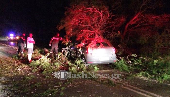 Δέντρο έπεσε σε αυτοκίνητο στην εθνική οδό στα Χανιά (φωτο)