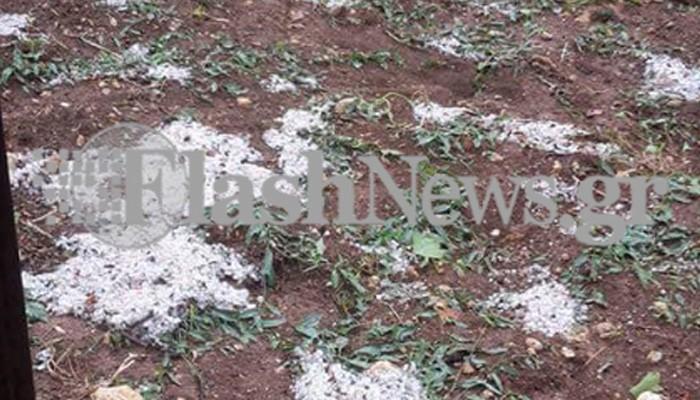 Καταστοφικό χαλάζι στο Ηράκλειο προκάλεσε ζημιές στα αμπέλια