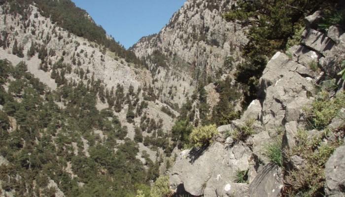 Ο Ορειβατικός στο Φαράγγι Ελυγιάς