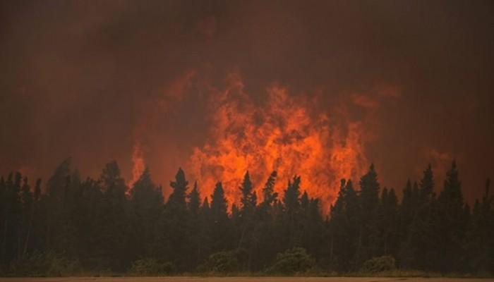 Υψηλός κίνδυνος εκδήλωσης πυρκαγιάς στο Ηράκλειο