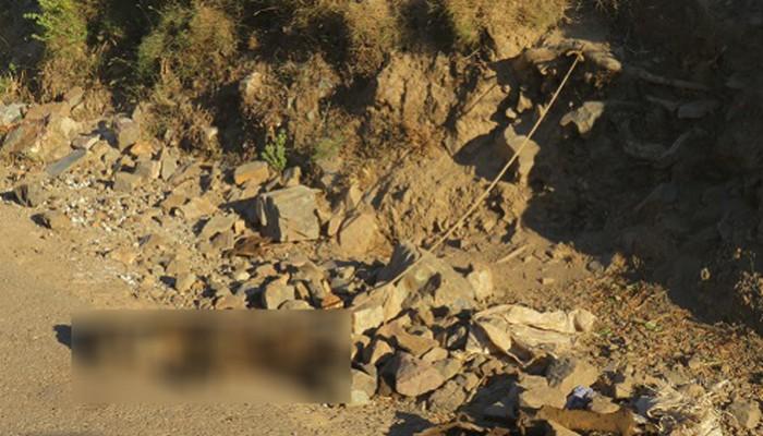 Σοκαριστικός θάνατος σκύλου απο ασιτία και καύσωνα στην Κίσσαμο (φωτο)