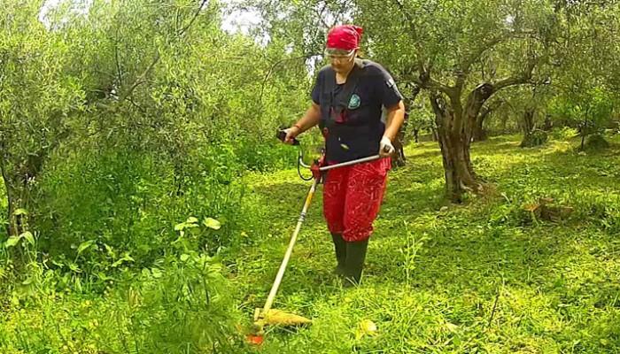AgroCenter Ραμπαλάκος: Θαμνοκοπτικό Nakayama στην καλύτερη τιμή της αγοράς
