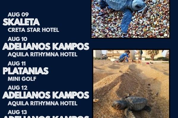 Δημόσια εκσκαφή στο Ρέθυμνο για θαλάσσιες χελωνίτσες