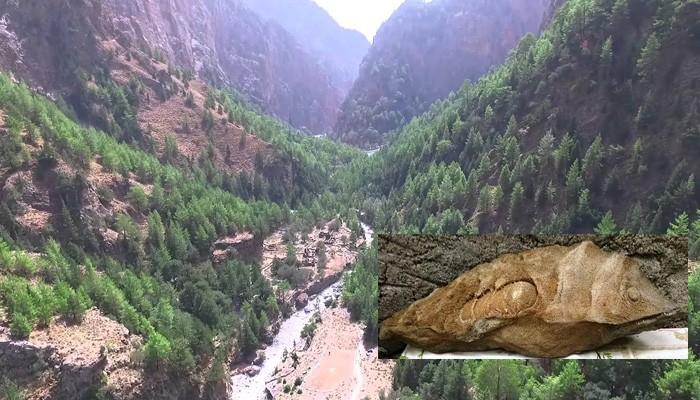 Βρέθηκε απολιθωμένο ψάρι (;) στο φαράγγι της Σαμαριάς (φωτο)