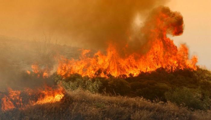 Πυρκαγιά σε δύσβατο σημείο κοντά σε οικισμό στο Λασίθι