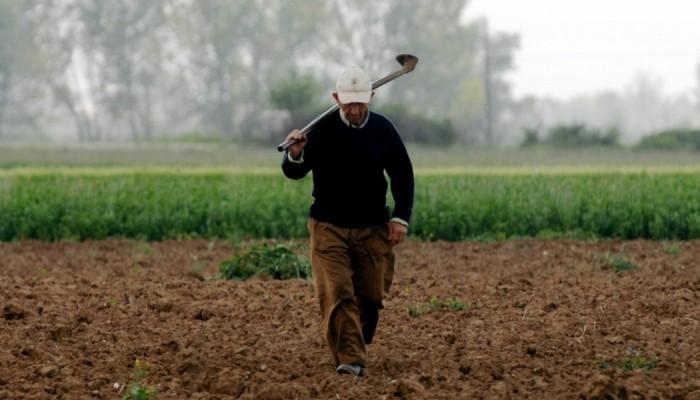 Μια πρόταση-τομή για τον Αγροτικό Τομέα