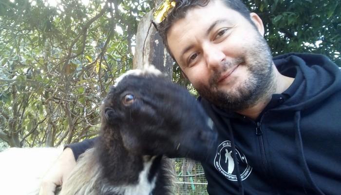 Ο Κρητικός που εκπαίδευσε σαν σκύλο ένα κριάρι! (βίντεο)