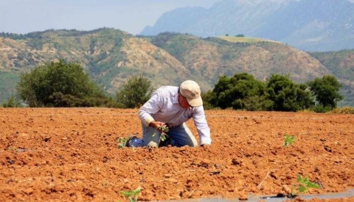 Ποιοι αγρότες κερδίζουν έκπτωση φόρου έως 2.100 ευρώ