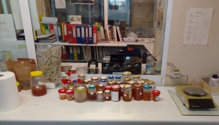 Χανιά: Πόσο κρητικό είναι το μέλι που τρώμε; Τι απειλεί τον