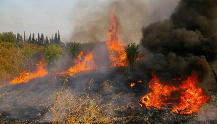 Φωτιά βρίσκεται σε εξέλιξη στον Βατόλακκο