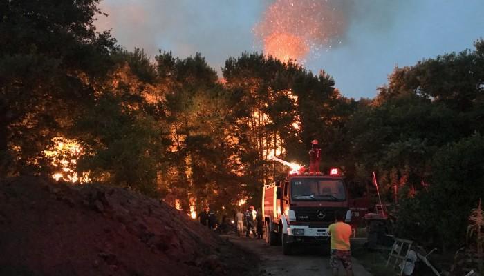 Ο πρώτος απολογισμός των καμμένων από τις δύο φωτιές στα Χανιά