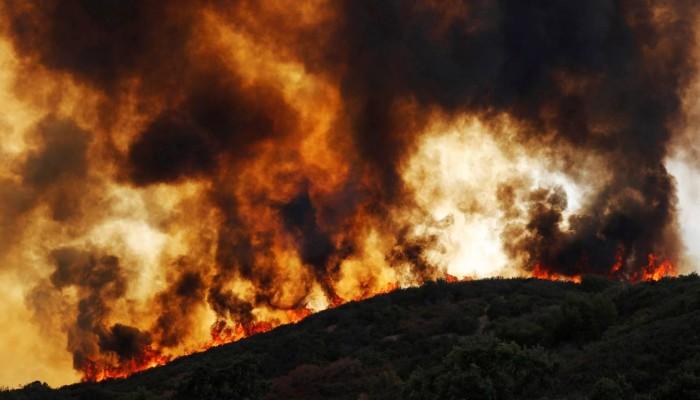 Άνδρας απανθρακώθηκε προσπαθώντας να σβήσει φωτιά στο περιβόλι του