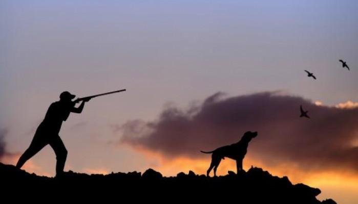 Ξεκινά η κυνηγετική περίοδος - Όλα όσα πρέπει να ξέρουν οι κυνηγοί στα Χανιά