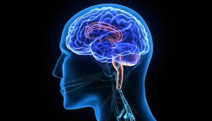 «Χακάρισμα» εγκεφάλων και κλοπές αναμνήσεων