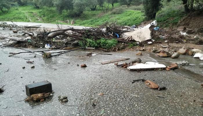 Έπεσαν δέντρα από την κακοκαιρία στα Χανιά - Πλημμύρες σε δρόμους (εικόνες)