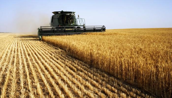 Η βιωσιμότητα του αγροτικού τομέα περνάει από την Κοινή Αγροτική Πολιτική