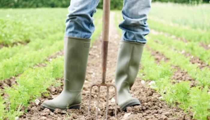 Ημερίδα με θέμα την οικολογία, την αειφορία και τη βιολογική γεωργία στα Χανιά