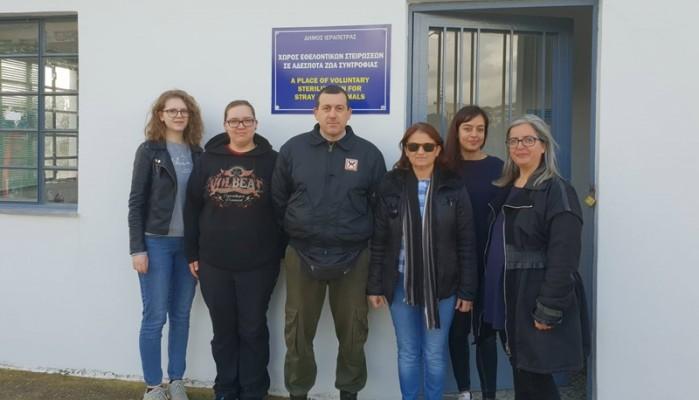 Εθελοντικές στειρώσεις αδέσποτων ζώων στον Δήμο Ιεράπετρας