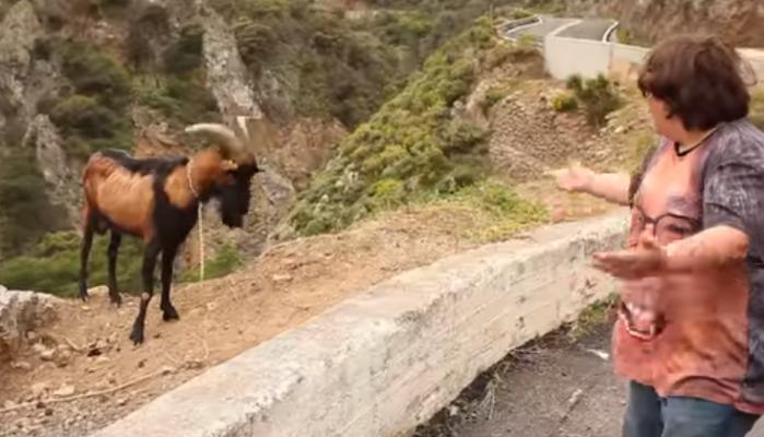 Όταν ο κωμικός Andy Μυλωνάκης έφτιαξε καλιτσουνάκια στην Κρήτη (βιντεο)