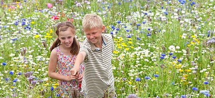 Όσοι μεγαλώνουν μέσα στο πράσινο, έχουν καλύτερη ψυχική υγεία