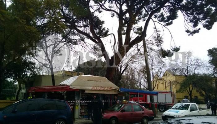 Έκκληση του δήμου Χανίων στους πολίτες μην πλησιάζουν στον κήπο