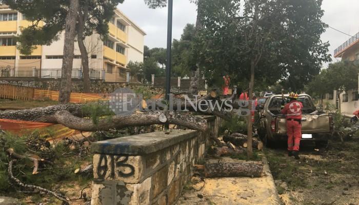 Δέντρο έπεσε πάνω σε αυτοκίνητο στα Χανιά (φωτο)