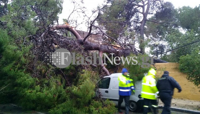 Ο Δήμος Χανίων πληρώνει αποζημιώσεις για ζημιές σε αυτοκίνητα από λακκούβες και δέντρα