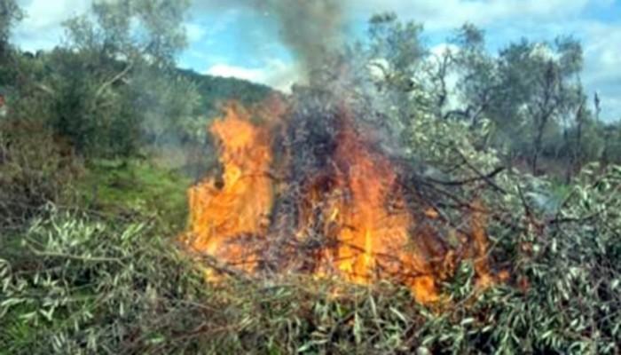 Επιμορφωτικό σεμινάριο στην ΟΑΚ για την ανεξέλεγκτη καύση αγροτικών υπολειμμάτων