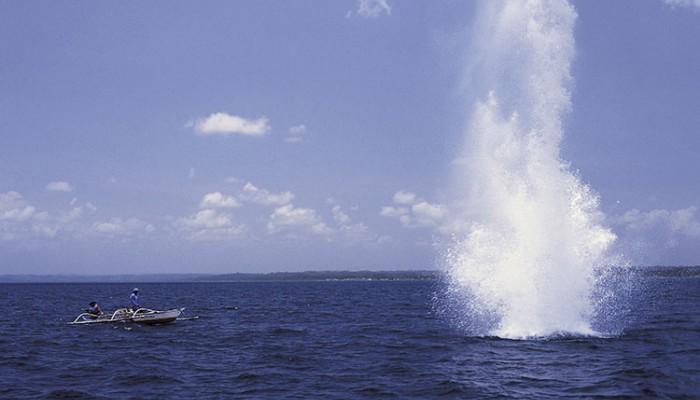 Ετοιμαζόταν να ψαρέψει με εκρηκτικά σε θάλασσα των Χανίων