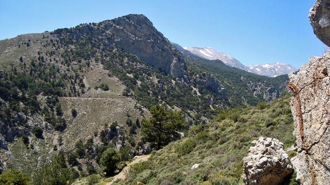 Ορειβατικός Σύλλογος Αγ. Νικολάου: Πεζοπορία στο δάσος του Σελάκανου