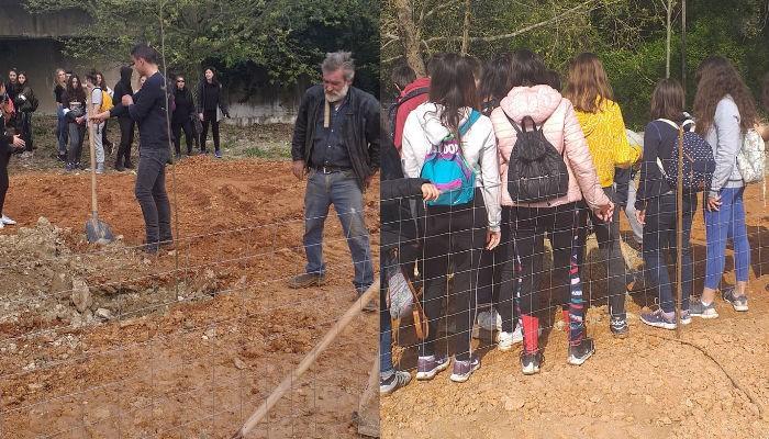 Δενδροφύτευση από μαθητές στον Δήμο Αποκορώνου