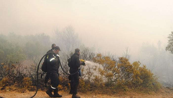 Έξι πυρκαγιές και μια σύλληψη στο Ηράκλειο