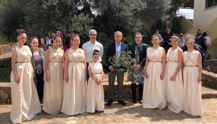 Έκοψαν τον κότινο της αρχαίας ελιάς των Βουβών για τον Μαραθώνιο Κρήτης